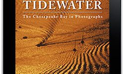 Tidewater Epub on Amazon