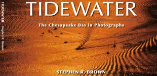 Chesapeake Bay:  Tidewater